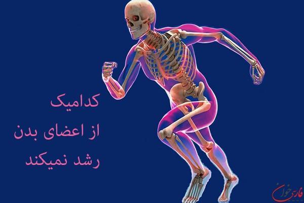 کدامیک از اعضای بدن رشد نمیکند